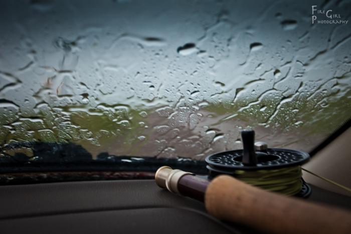Rainy day bliss.