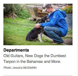 Jake Gates and Marley make the pages of TFFJ.