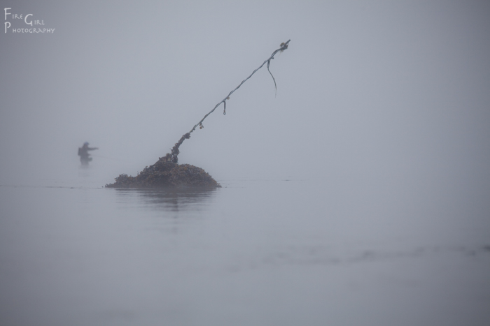 Justin Waters wades into the Puget Sound's layers of grey, rod at the ready.